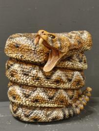 Slangen spaarpot