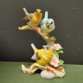 Beeld kleuren vogeltjes op tak omhoog