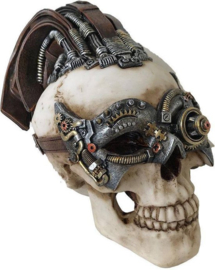 Steampunk beeld skull leather hair