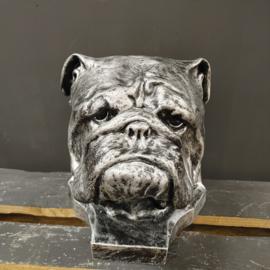 Hondenkop  Engelse bulldog Beeld -zilver