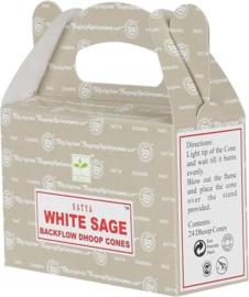 Cones-Wierook kegels White Sage