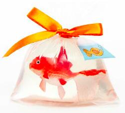 Happy Fishbag