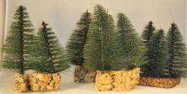 Bomen op kurk set