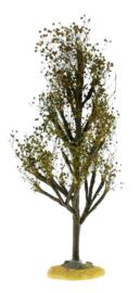 Tree Brown