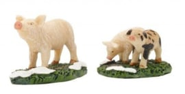 Pig & Piglets, Set Of 2