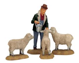 The Good Shepherd, Set Of 4