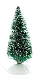 Shimmering Bristle Tree Medium