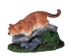 Puma's Perch