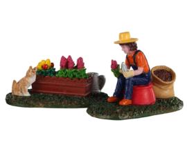 Garden Grooming