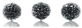 Round Bristle Tree, Set Of 3