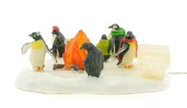 Penguin Warmup