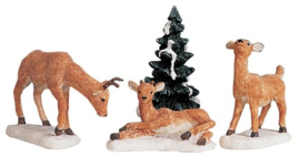Dad And Fawns, Set Of 4