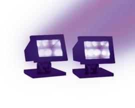 Halloween Purple Light, Set Of 2
