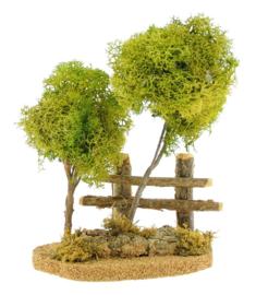 Bomen met hekwerk