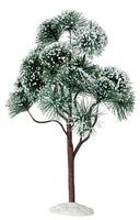 12'' Mountain Pine