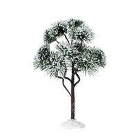 9'' Mountain Pine