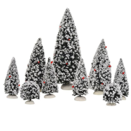 Evergreen tree assorted 9 pieces