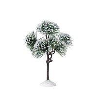 6'' Mountain Pine