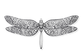 Libelle 100x45cm