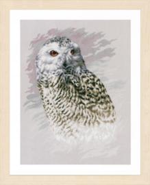 Snowy Owl Aida Lanarte