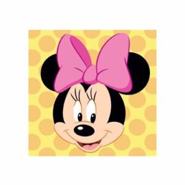 Minnie Mouse Polka borduurpakket voorbedrukt stramien