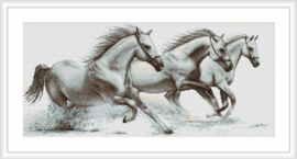 White Horses Aida Borduurpakket Luca-S