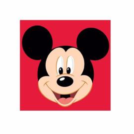 Mickey Mouse borduurpakket voorbedrukt stramien