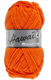 213 Hawaï 4 Lammy