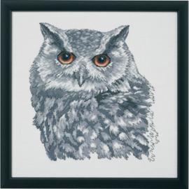 Owl in Grey Eavenwave Borduurpakket Permin