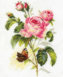Rose and Butterfly Aida Alisa Telpakket