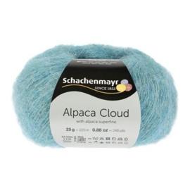 065 Alpaca Cloud SMC