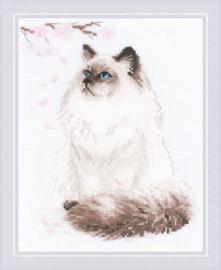 Meow-Zen Aida Borduurpakket Riolis