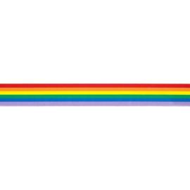Regenboog lint 25mm