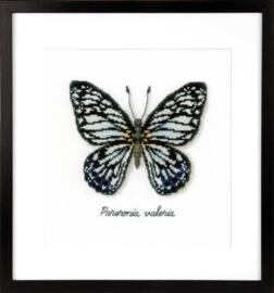 Blauwe vlinder aida La Maison Victor telpakket