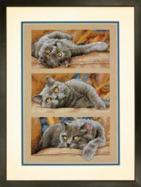 Max the Cat Aida Borduurpakket - Dimensions