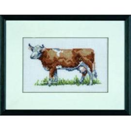 Rode koe Eavenwave telpakket - permin