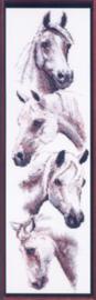 White Horses - Witte Paarden Janlynn Borduurpatroon
