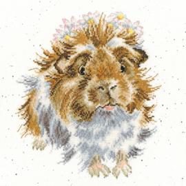 Grinny Pig Aida Wrendale Designs By Hannah Dale Bothy Threads Telpakket