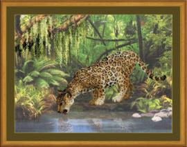 Leopard near the water Aida borduurpakket - Riolis