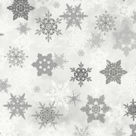 Winter wonderland 04153 S
