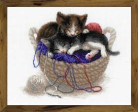 Kittens in a Basket Aida Borduurpakket Riolis