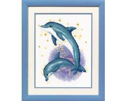 Dolfijnendans Aida Vervaco Telpakket