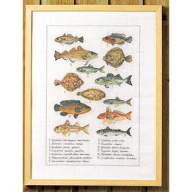 Fisch eavenwave borduurpakket - Permin