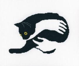 RTO Among Black Cats M669