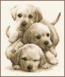 Labrador Puppies Aida telpakket - Vervaco