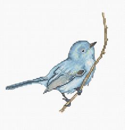 Bluebird Aida Borduurpakket Luca-S
