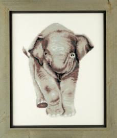 Jong olifantje Aida telpakket - Pako