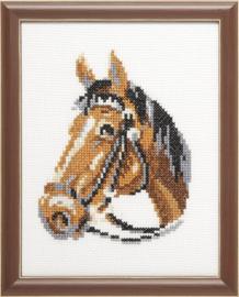 Paard Aida telpakket Pako