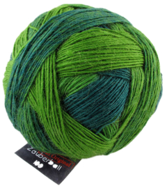 Evergreen 2168 Zauberball 100 Schoppel