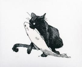 RTO Among Black Cats M665